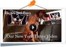 Pet Chauffeur in NY TIMES